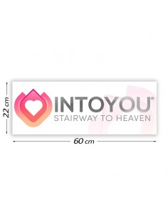 Cartel Promocional Intoyou...